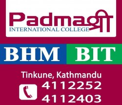 Padmashree International College